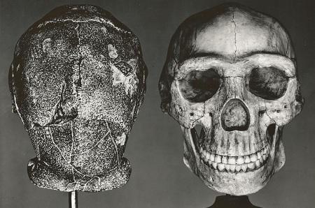 Remains of Peking Man