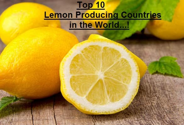 Lemon Producing Countries